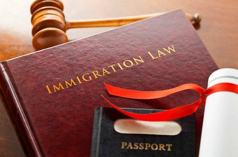 A book labelled IMMIGRATION LAW sits near a passport and gavel